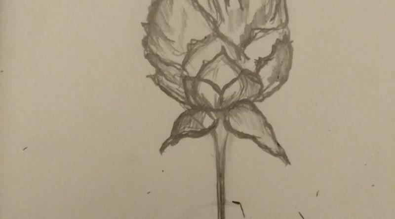 Il était une fois le lotus